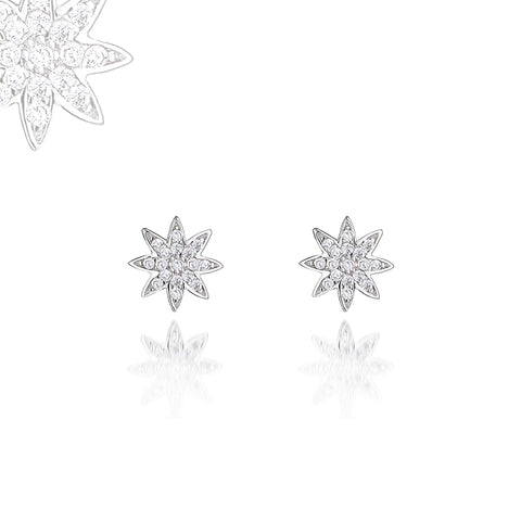 Nova silver stud earrings