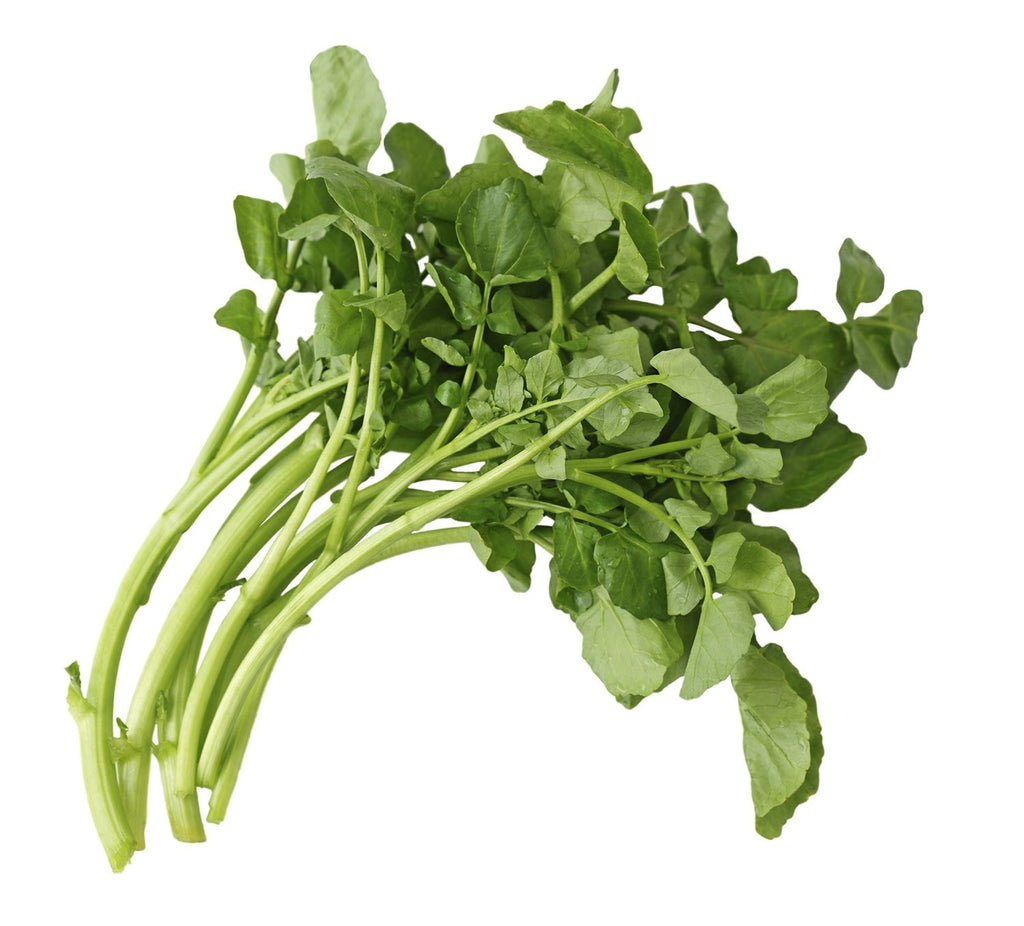 Certified Non-GMO Watercress Seeds - Upland Cress (750)
