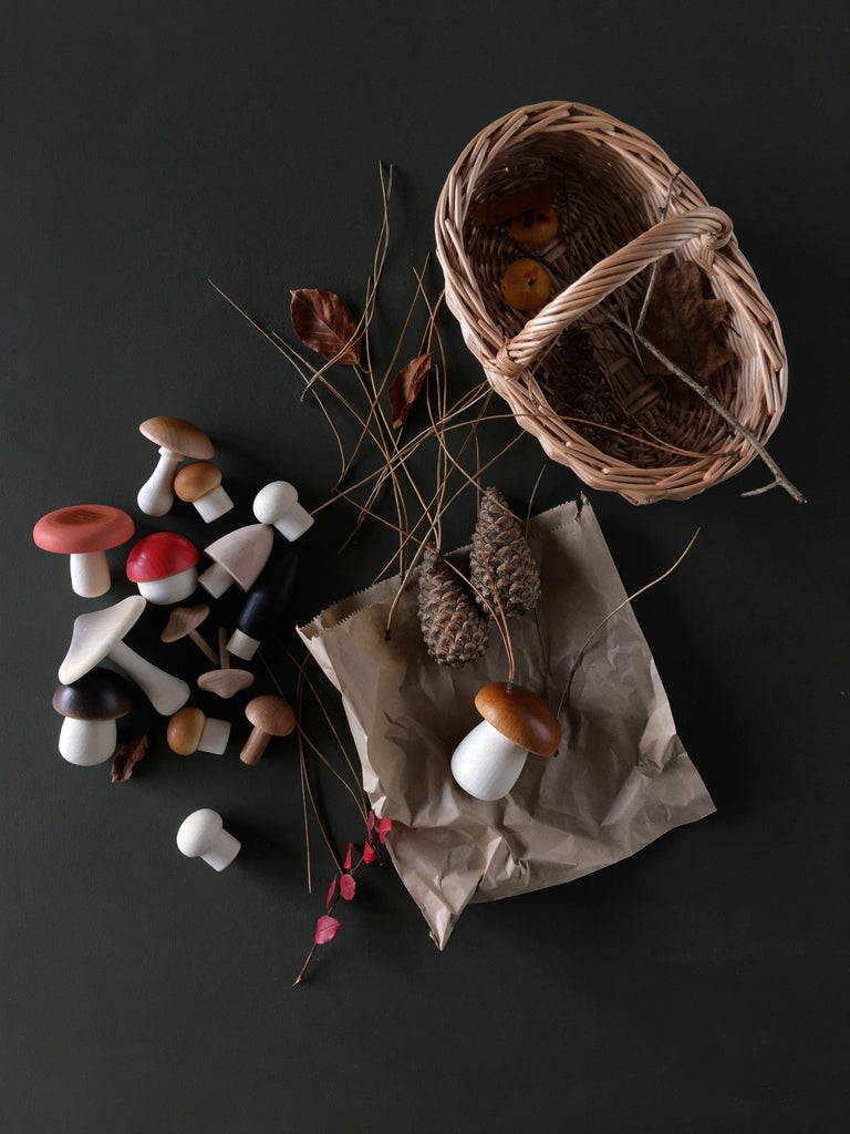 Forest Mushroom Basket - Dark-Moon Picnic-BoNordic