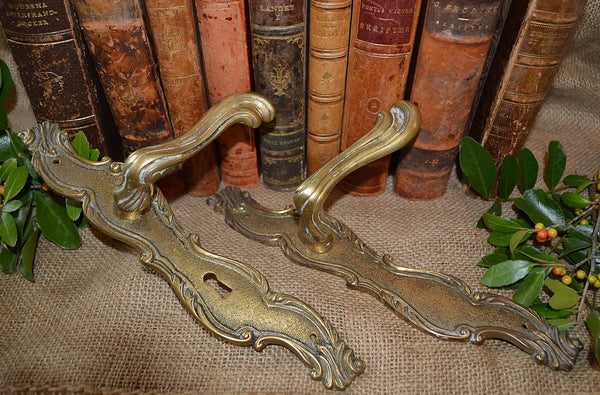Antique French Brass Door Handles Set with Back Plates Art Nouveau - Antique Flea Finds