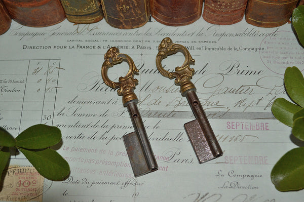 Antique French Key Blank Uncut Barrel Skeleton Bronze 2 Available