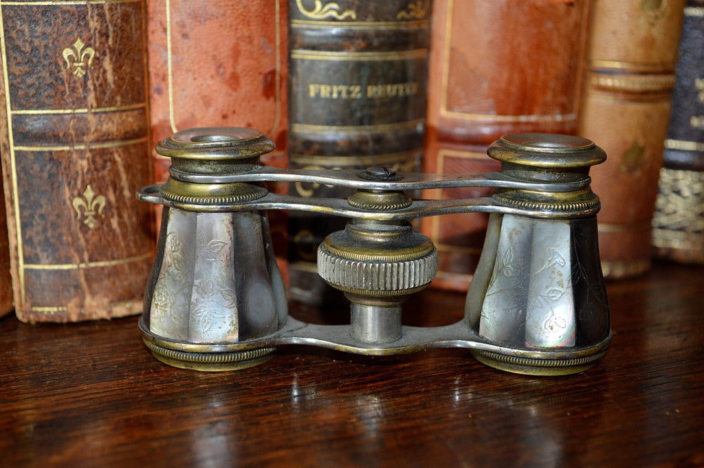 Antique French Opera Mother of Pearl Glasses Binoculars with Etched Flowers - Antique Flea Finds - 1
