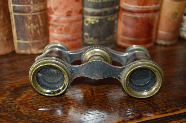 Antique French Opera Mother of Pearl Glasses Binoculars with Etched Flowers - Antique Flea Finds - 3