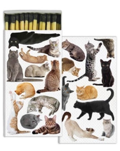 Cat Matches