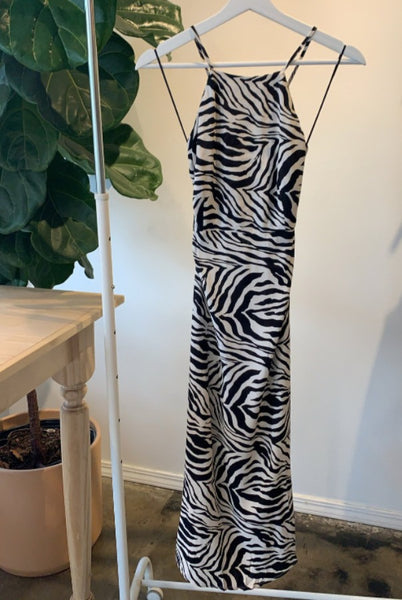 Zebra Cody Dress