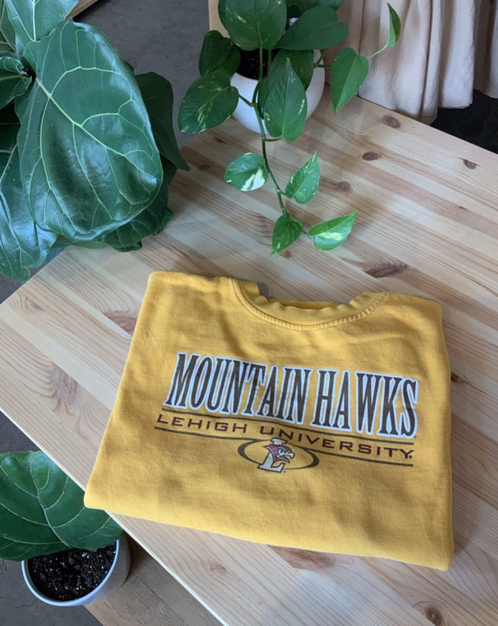Vintage Mountain Hawks Leigh University Sweatshirt