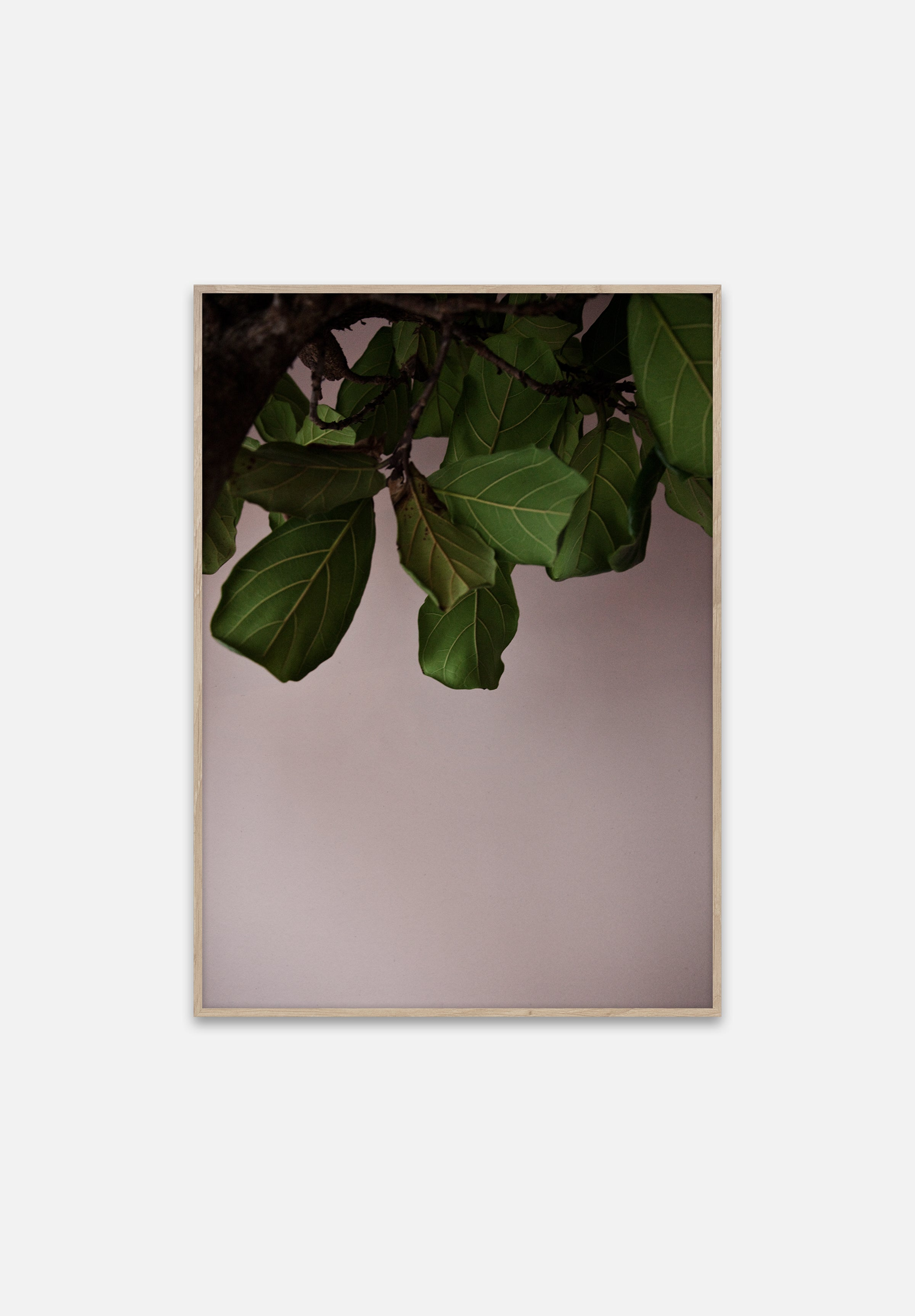 Green Leaves-Norm Architects-Paper Collective-50 x 70cm-Average