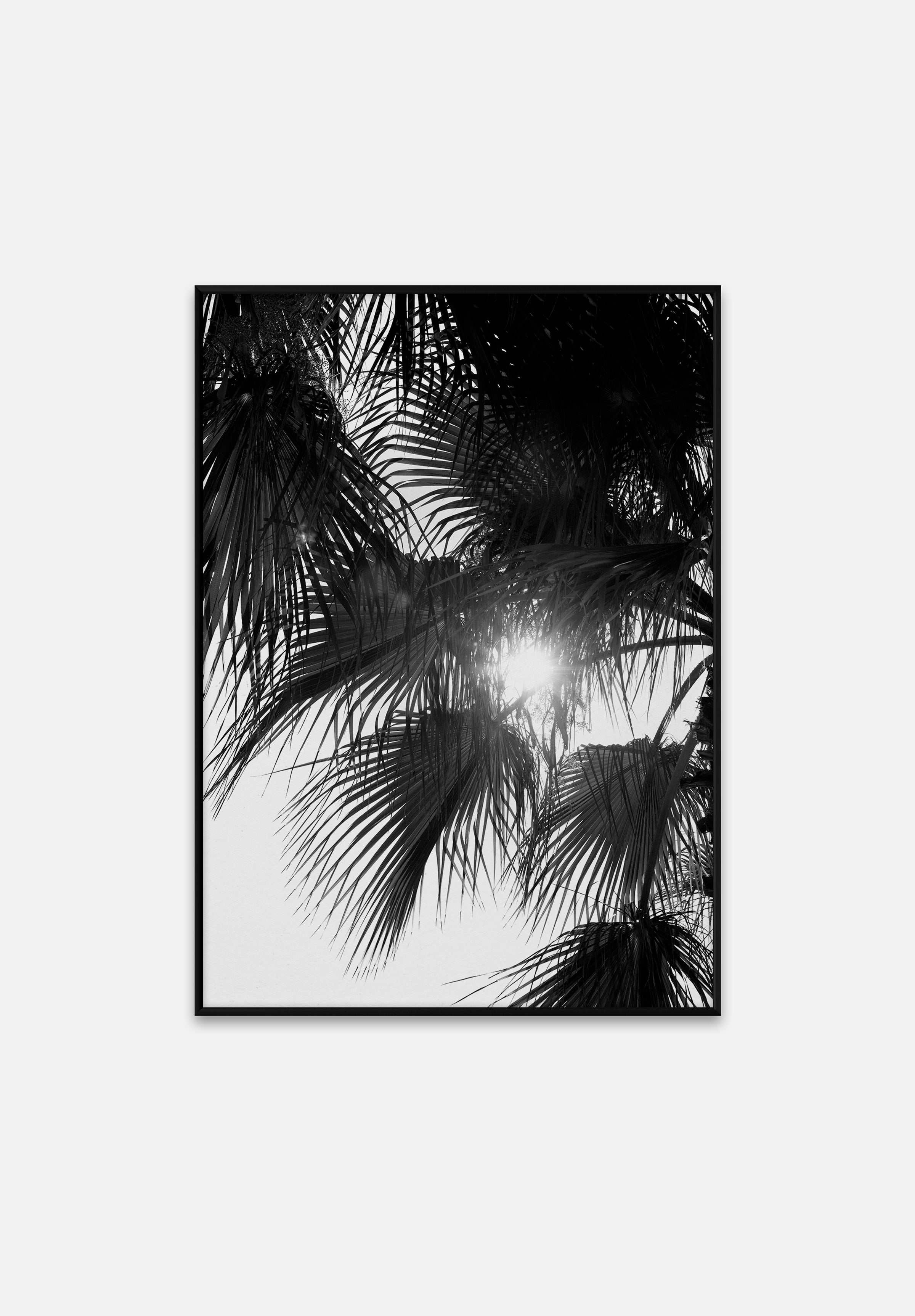 Palm Trees-Norm Architects-Paper Collective-Average