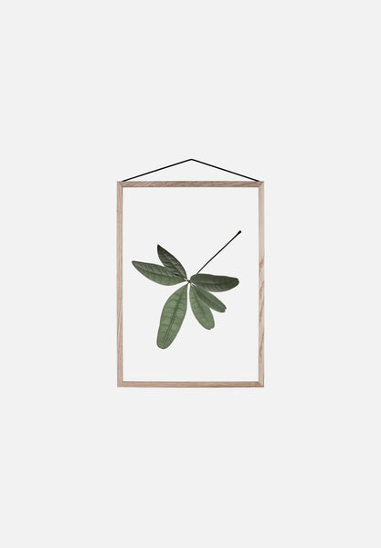 Floating Leaves — Small-Norm Architects-Paper Collective-No.6-Average