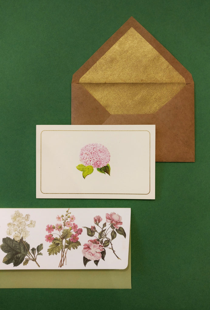 Botanical Money Envelope and Hydrangea Stationery Set