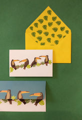 Toucan Money Envelope and Stationery Set