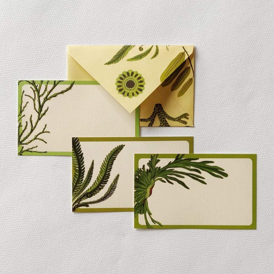 Fern Stationery set