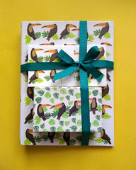 Toucan Folder, Money Envelope and Stationery Set