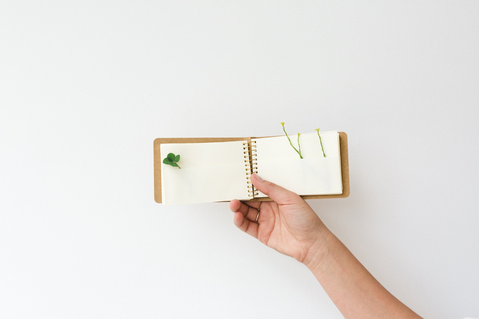 Spiral Collecting Notebook