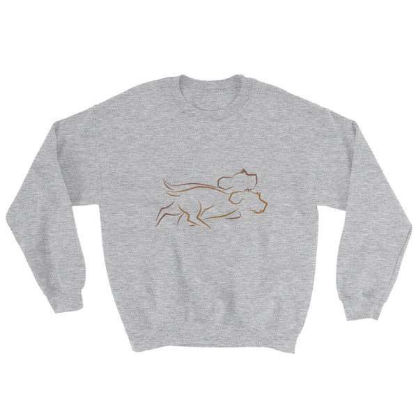 DOUBLE ZOOMIES sweatshirt (available in Europe)