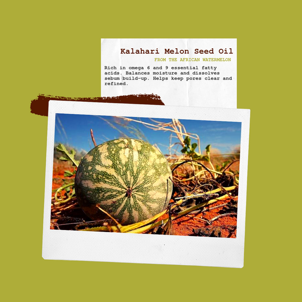 Yangu Beauty Kalahari Melon Seed Oil