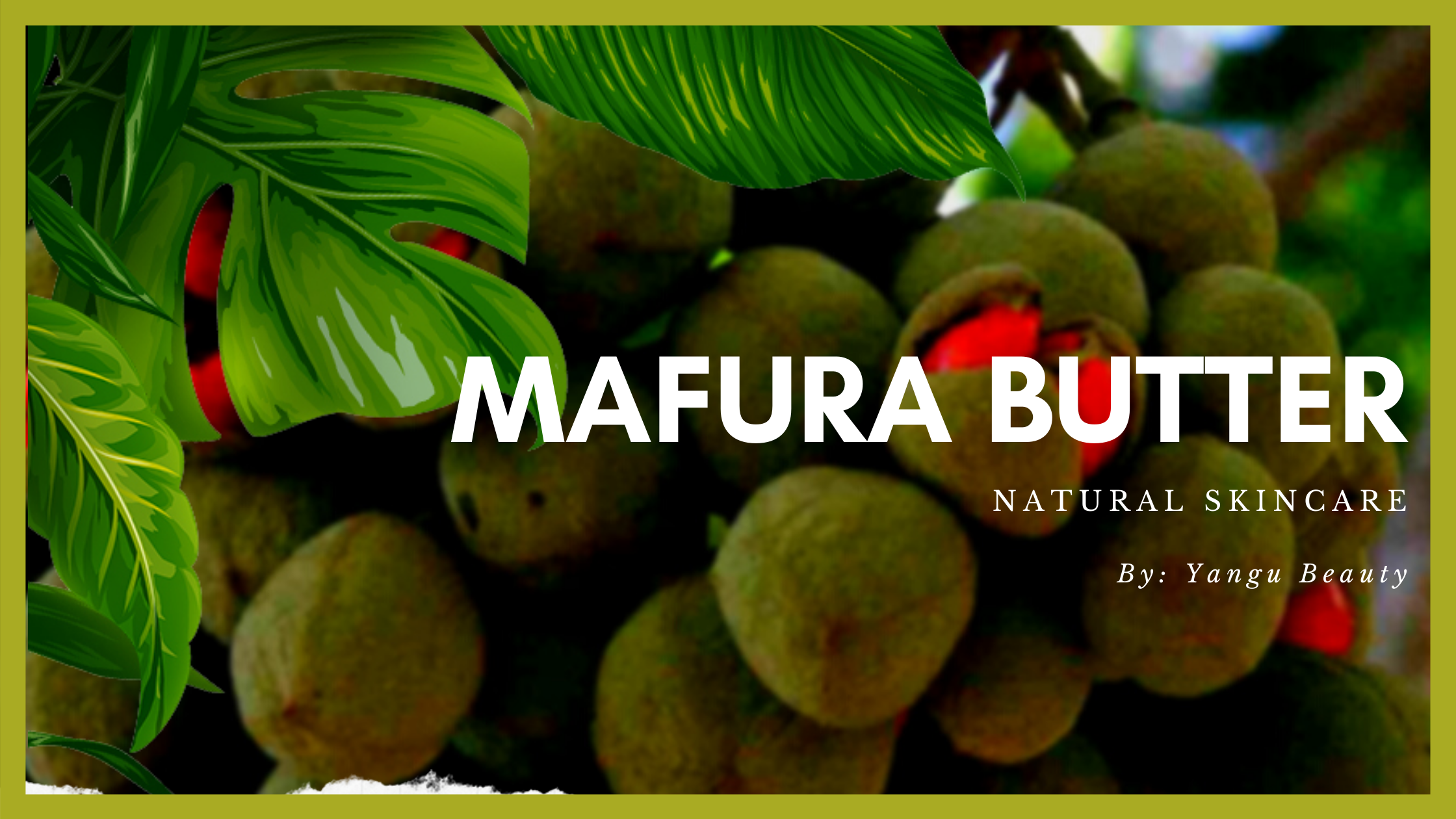 Mafura Butter - Yangu Beauty Natural Skincare