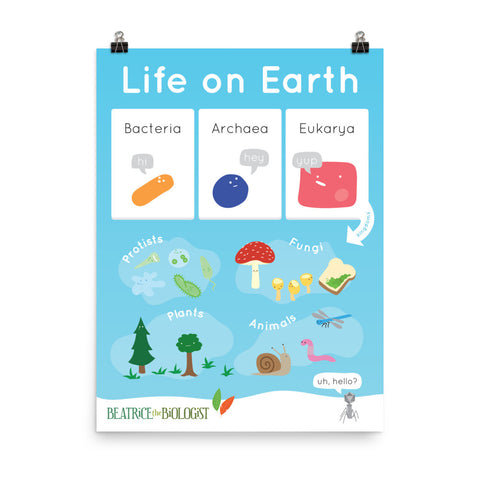 Life on Earth Poster