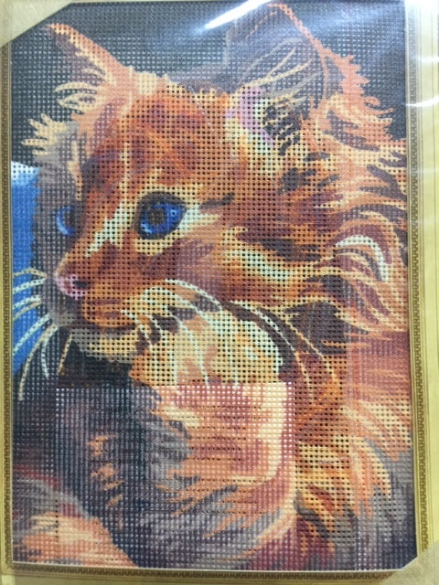 kit petit point 6229