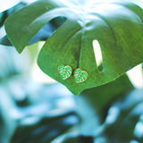 Monstera Leaf Earrings - Gold Plated