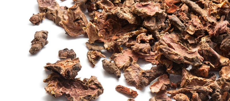 The Benefits Of Rhodiola Rosea: 4 Critical Reasons Why This Powerful Adaptogen Could Be The Answer To Your Stress