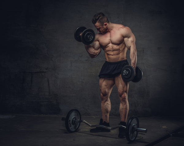 should i bulk or cut - swolverine