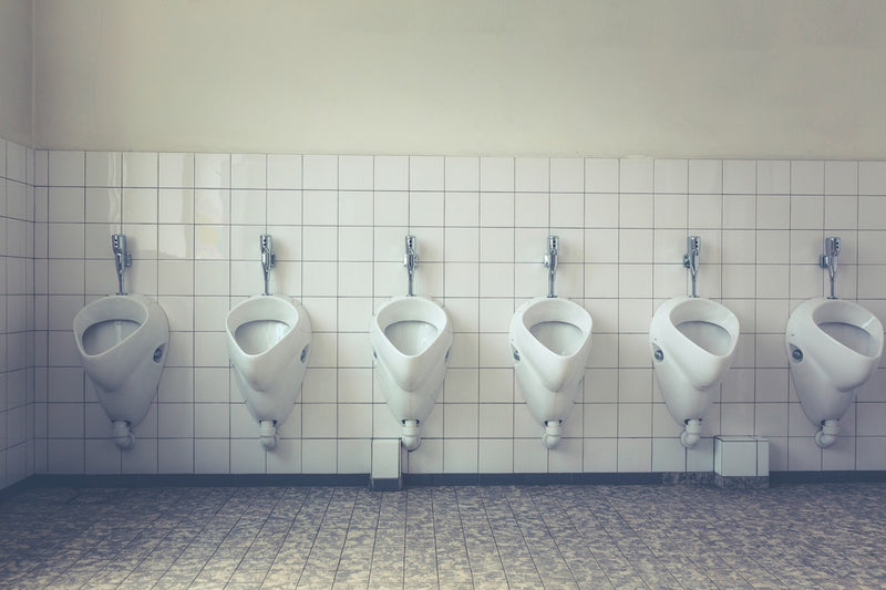 The Effects Of Probiotics On Bowel Movements
