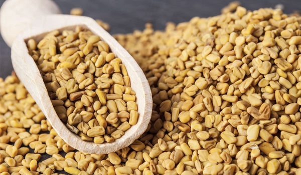what does fenugreek do?