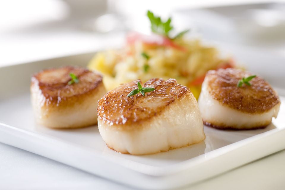 Best_Super_Foods_Elivate_Nutrition_Scallops