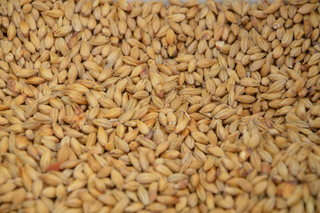 What Are Whole Grains - Swolverine