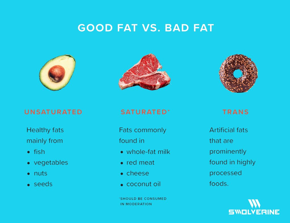 Good Fat Vs Bad Fat Swolverine