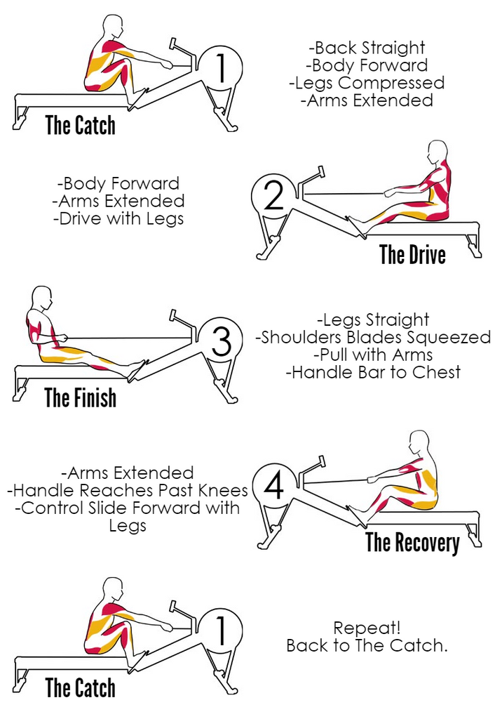 How To Get Better At Rowing Form