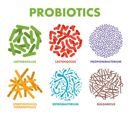 8 Probiotic Rich Foods - Swolverine