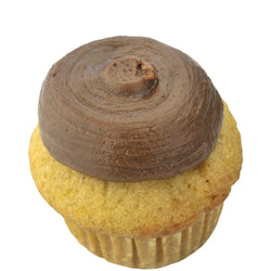 Mini Cupcake 6 Pack - Lemon Chocolate
