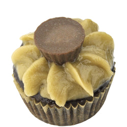 Mini Cupcake Single - Sun Butter Cup