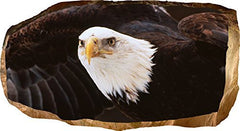 Startonight 3D Mural Wall Art Photo Decor American Eagle Amazing Dual View Surprise Large 32.28 inch By 59.06 inch Wall Mural Wallpaper for Living or Bedroom Room America Collection Wall Art