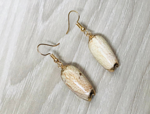 14K Gold Cowrie Sea Shell Earrings