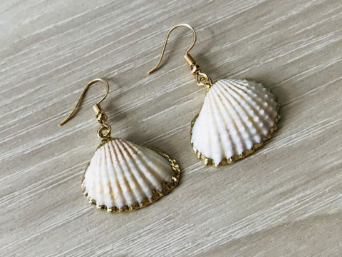14K Gold Fan Shell Earrings