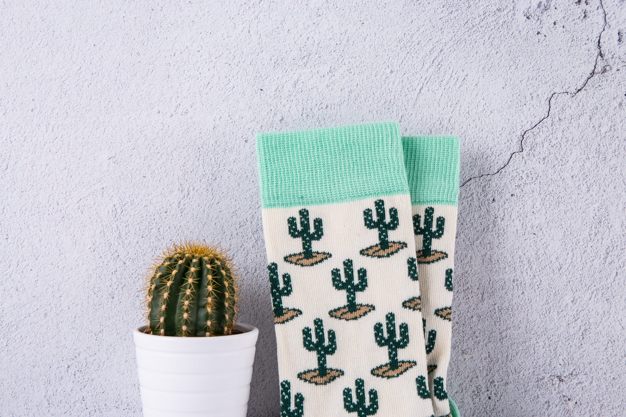 Cactus and Palm Tree socks are back! 🌵 🌴