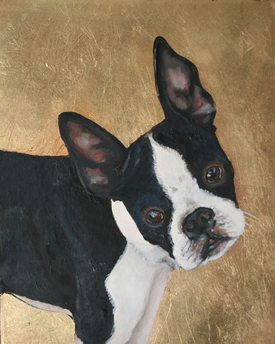 Boston Terrier SOLD commission