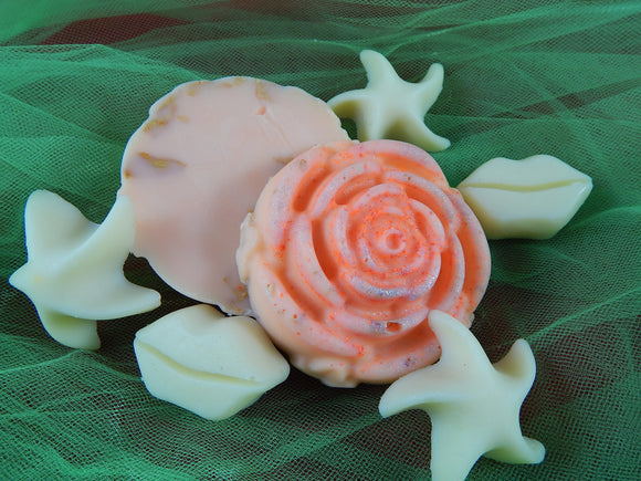 Lotion Massage Bar- Perfect Passion - TRASCENTUALS