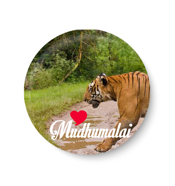 Love Mudhumalai Fridge Magnet