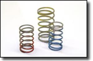 Tial Wastegate Springs - F38 -