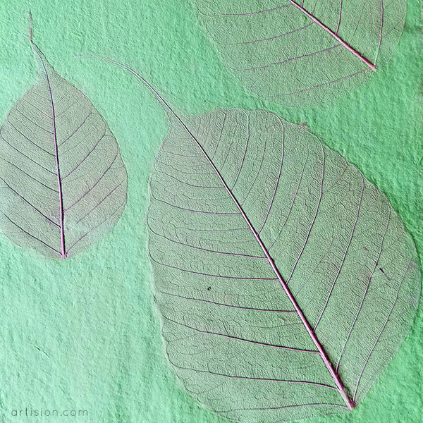 Handmade Paper with Skeleton Leaves