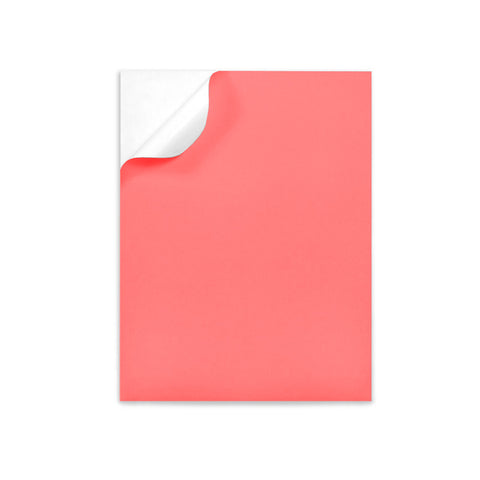 "CORAL Color label sheets 8.5"" x 11"""