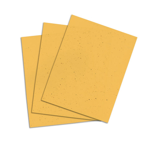 Sunflower Yellow Cardstock - 8 1/2 X 11