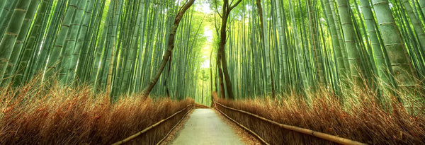 Bamboo – the new Luxury. Spring into Spring with Bamboo!