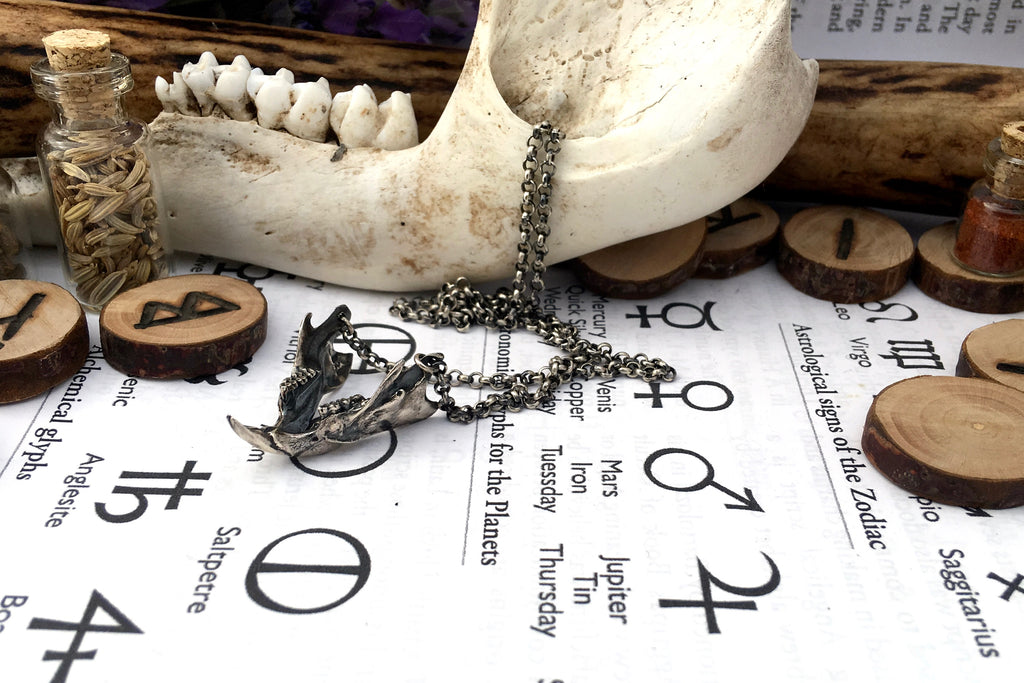 Zoë Ace Metal sterling silver macabre rat jaw necklace goth fashion