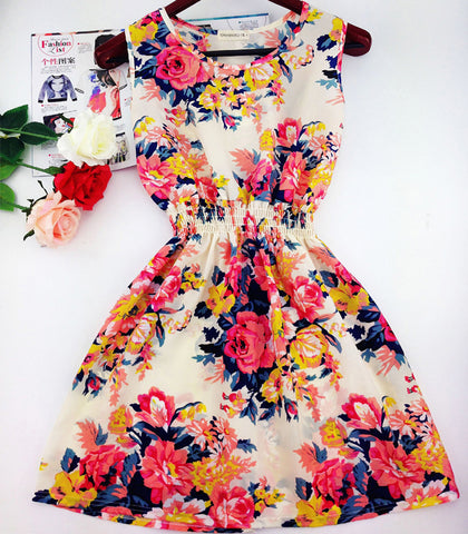 autumn new Korean Women casual Bohemian floral leopard sleeveless vest printed beach chiffon dress