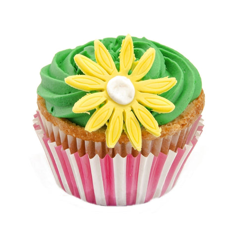 Children's Cup Cake